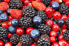 Different fresh berries. As background Stock Photos