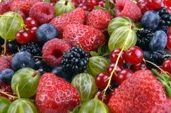 Different fresh berries Stock Photos