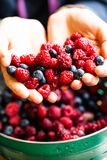 Different fresh berries as background.  Stock Photos