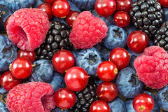 Different fresh berries Royalty Free Stock Photography