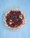 Different fresh berries as background Stock Images
