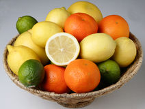 Different fresh citrus fruit Royalty Free Stock Image