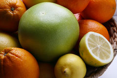Different fresh citrus fruit Royalty Free Stock Images