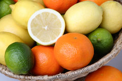 Different fresh citrus fruit Stock Images