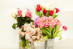 Different fresh cut flowers in vases against white background Royalty Free Stock Photo
