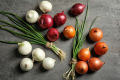 Different fresh onions. On grey background Stock Photos