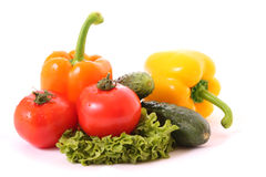 Different fresh vegetables Stock Photography