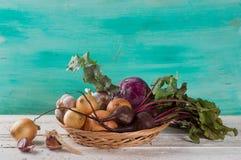 Different fresh vegetables Stock Photos