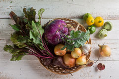 Different fresh vegetables Royalty Free Stock Photo