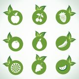 Different fruit icons and design with green leaf Royalty Free Stock Photos
