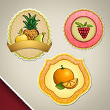 Different fruit labels Royalty Free Stock Photography