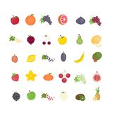 Different fruit set. All kinds of fresh tasty fruit Royalty Free Stock Image
