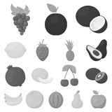 Different fruits monochrome icons in set collection for design. Fruits and vitamins vector symbol stock web illustration. Different fruits monochrome icons in Royalty Free Stock Photos