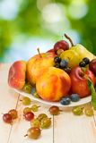 Different fruits on a plate on a green background Royalty Free Stock Image