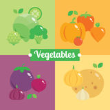 Different fruits and vegetables by colours. Vector modern illustration, stylish design element stock illustration