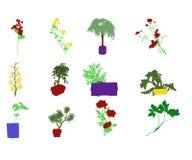 12 Garden Flowers. This is a digital art illustration. The illustrations shows a set of twelve different garden flowers. The background is isolated royalty free illustration