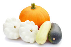 Different gourd family vegetables Stock Image