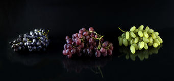 The different grapes stock images