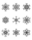 Different gray snowflakes Stock Images