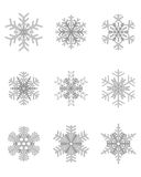Different gray snowflakes Stock Photos