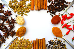 Different ground and whole spice in border Royalty Free Stock Photo