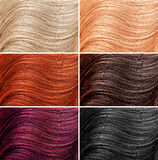 Different hair colors Stock Photos