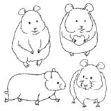 Different hamster sketches by free hand on white background. Vector hand drawn illustrations of line art of rodents stock illustration