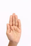 Different hand signs. In white background Royalty Free Stock Photography