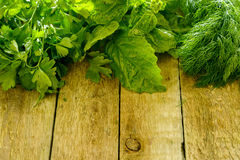 Different herbs foor cooking. On wooden table stock photos