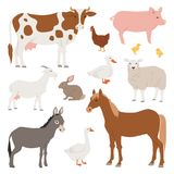 Different Home Farm Vector Animals And Birds Like Cow, Sheep, Pig, Duck Farmland Set Illustration Stock Photos