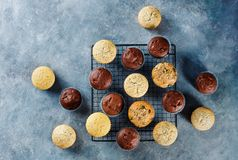 Different homemade muffins on a blue background, Royalty Free Stock Photo