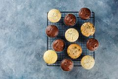 Different homemade muffins. Royalty Free Stock Images