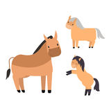 Different horses breed vector set. Royalty Free Stock Photos
