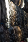 Different human hair extensions in wig shop Stock Photos