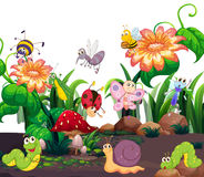 Different insects living in the garden stock illustration