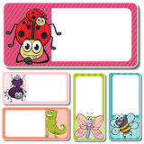 Different insects on square labels Stock Photo