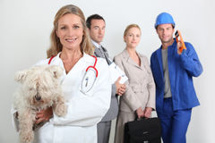 Different jobs Stock Photography