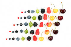 Different juicy berries are laid out in rows on a white backgrou Royalty Free Stock Photo