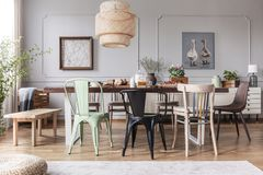 Different kid of chairs at table with flowers and food in rustic dining room interior with lamp and posters. Real photo. Concept royalty free stock images