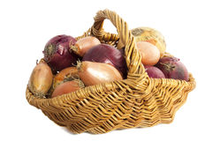 Different kin of onion Royalty Free Stock Images