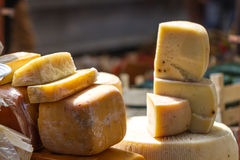 Different kind of Cheese Stock Images