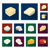 Different kind of cheese flat icons in set collection for design.Milk product cheese vector symbol stock web. Different kind of cheese flat icons in set Stock Photo