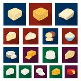 Different kind of cheese flat icons in set collection for design.Milk product cheese vector symbol stock web. Different kind of cheese flat icons in set Stock Image