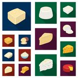 Different kind of cheese flat icons in set collection for design.Milk product cheese vector symbol stock web. Different kind of cheese flat icons in set Stock Images