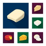 Different kind of cheese flat icons in set collection for design.Milk product cheese vector symbol stock web. Different kind of cheese flat icons in set Royalty Free Stock Photography
