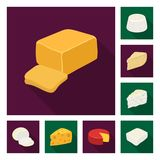 Different kind of cheese flat icons in set collection for design.Milk product cheese vector symbol stock web. Different kind of cheese flat icons in set Royalty Free Stock Image