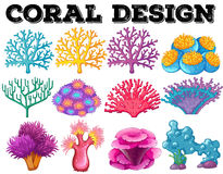 Different kind of coral design Stock Photography