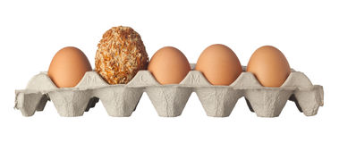Different kind of egg Royalty Free Stock Photo
