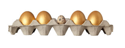 Different kind of egg. Quail egg in the middle of a tray of golden eggs isolated on white background Royalty Free Stock Images