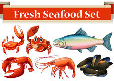Different kind of fresh seafood Stock Images